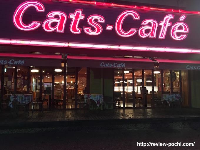 catscafe1